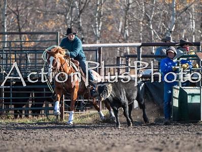 20MRHF Heel Horse Rd 2