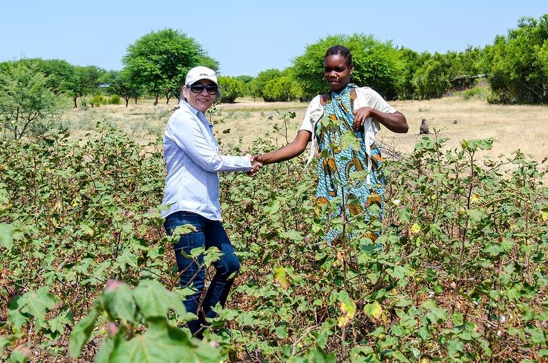 In the fields of Mwanza
