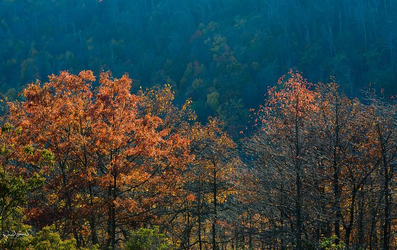 2012-10-21 at 14-19-41.jpg