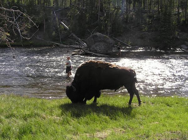 2007 USA Parks