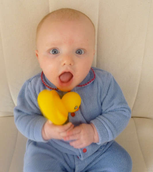4 months, December 2012