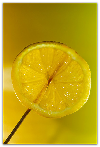 Lemonsicle