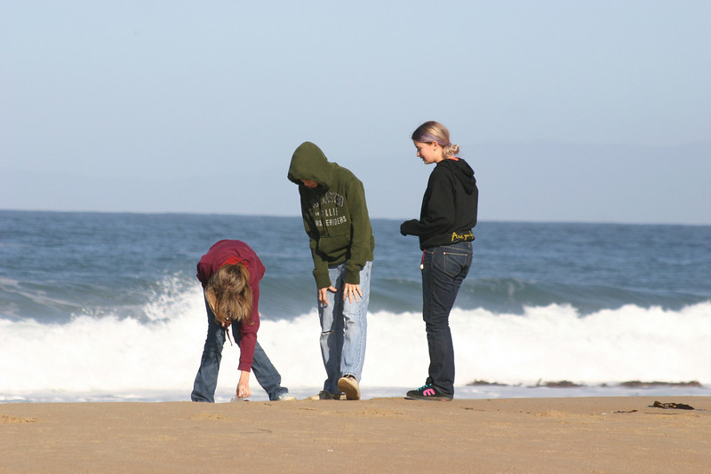 Investigating the sand.