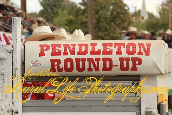 Pendleton Round-up Wednesday 2015