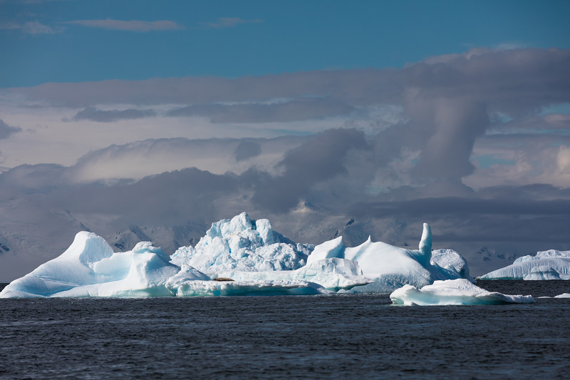 _MG_7390_20170122_Antarctica.jpg