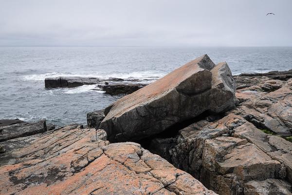 wandering Acadia