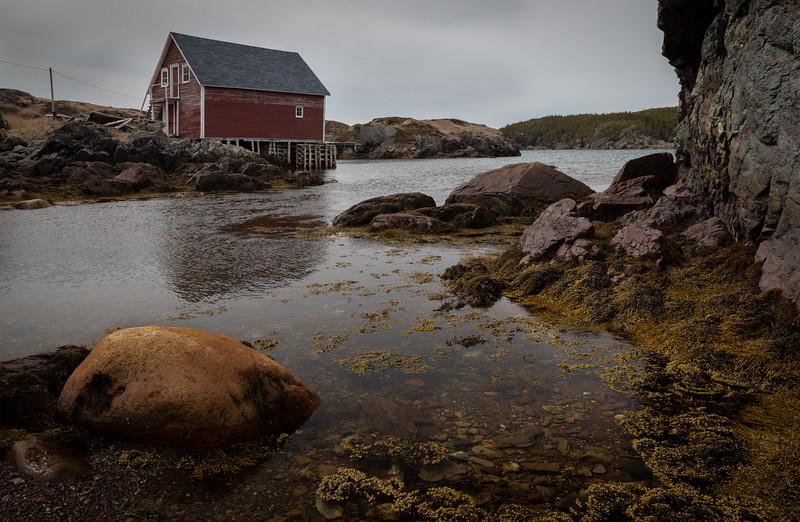 Change Islands rock in little harbor