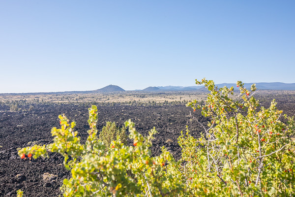 Lava Beds National Monument - Above Ground
