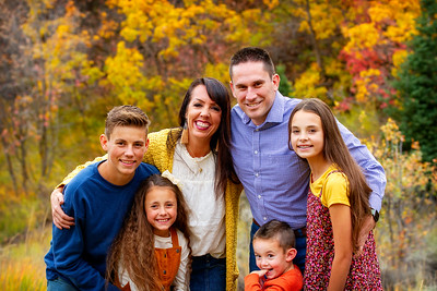 Aird Family