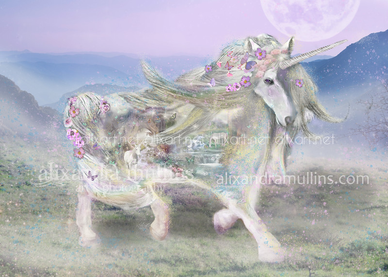 Unicorn Gallop Shape
