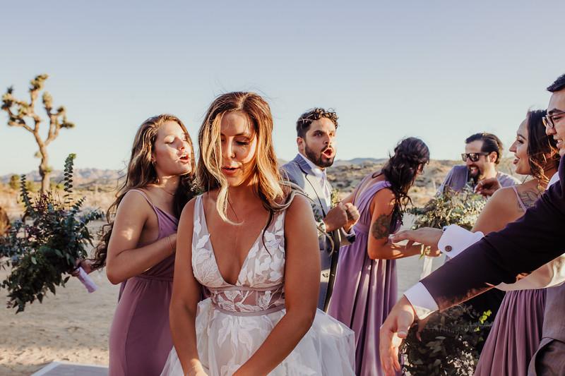 Elise&Michael_Wedding-Jenny_Rolapp_Photography-842.jpg