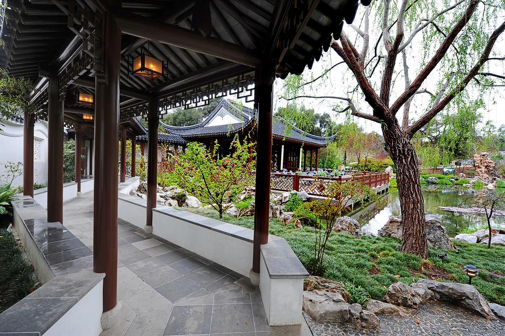 . Chinese Garden at The Huntington in San Marino Friday, February 28, 2014. (Photo by Walt Mancini/Pasadena Star-News)