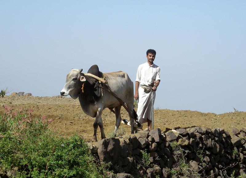 plowing a field near al-Hajarah