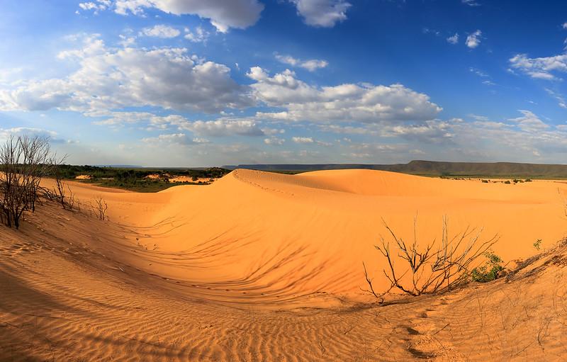 Dunes of Jalapão, Tocantins - Brasil