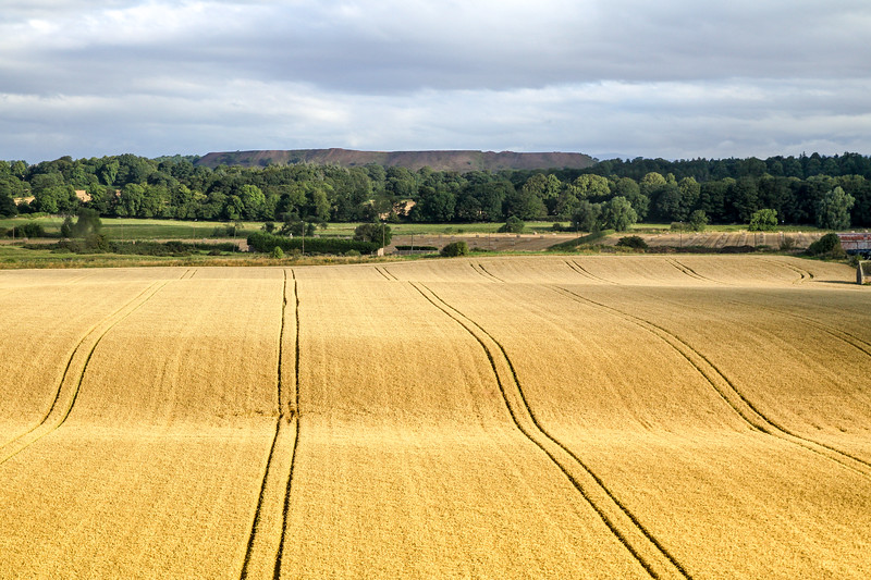 Scotland (6 of 65).jpg