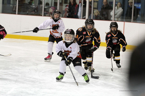 Clarington Girls Novice Team 2 Jan. 21, 2012