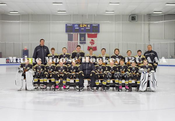 Maine Moose Hockey 12U AAA