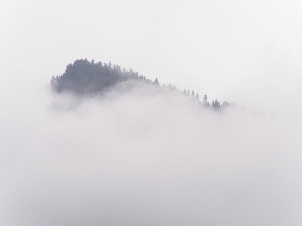 Svanetian Fog