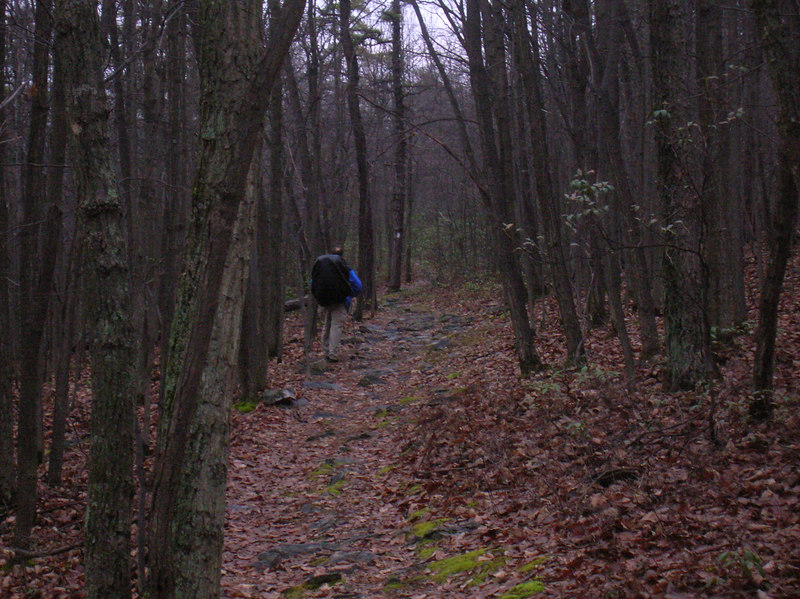 Following Tim on a dreary, overcast & wet Friday hike