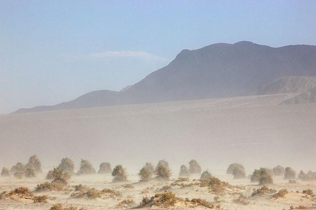 The Sand Storm III
