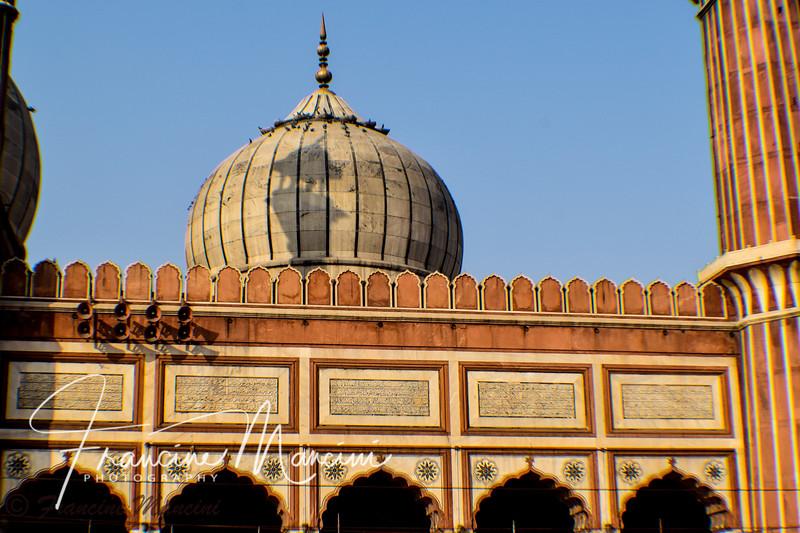 India  (118 of 5540).jpg