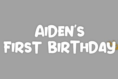 Aiden's 1st Birthday 1/26/20