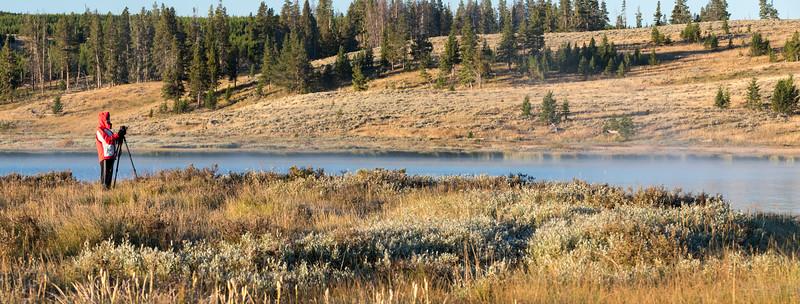 Swan-Lake-17.jpg
