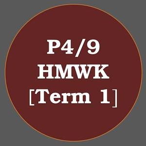 P4/9 HMWK T1