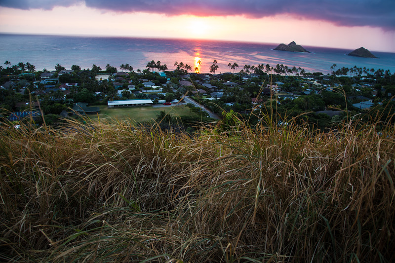 Hawaii 2018 reg cam-8232.jpg