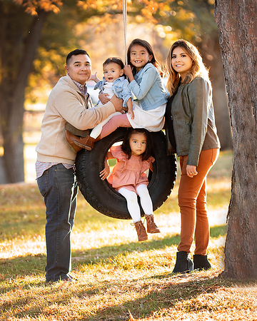 Aragon family