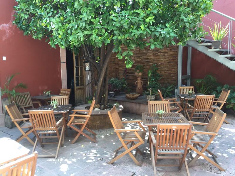 Casa del Naranjo, Dave Millers Mexico