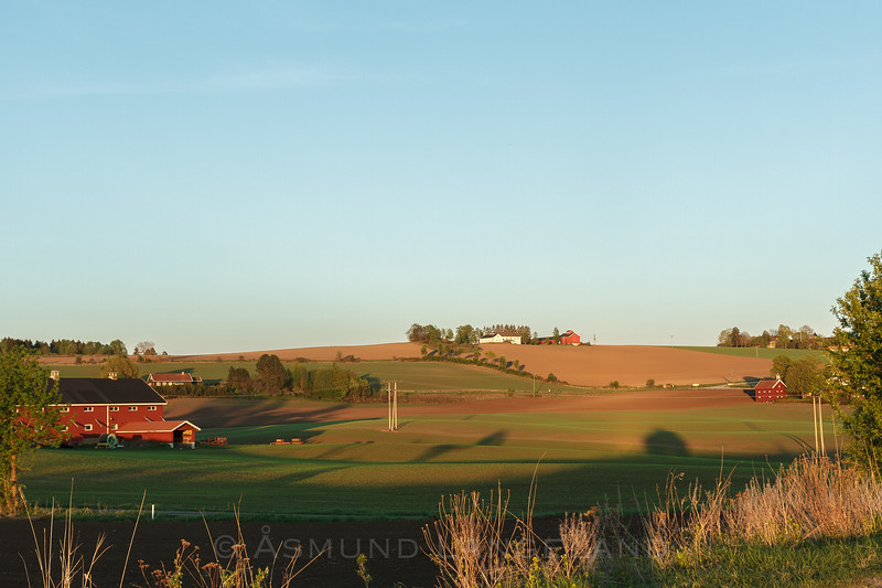 Hammerstad gård og Lille -re