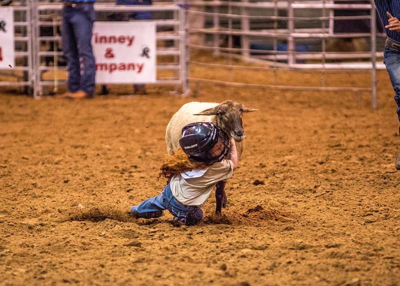 Rodeo_542.jpg