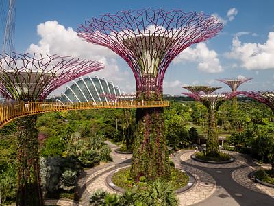 South East Asia Cruise 2016