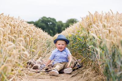 George in the Cornfield