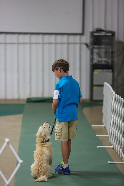 Dog Show-5.jpg