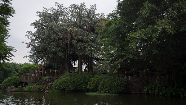 Disneyland Resort, Hong Kong Disneyland, Tarzan's Treehouse, Tarzan, Jungle Cruise, Jungle, Cruise, Adventureland
