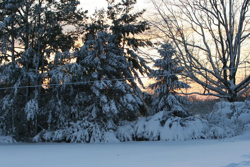 snow 2010 feb IMG_2387 (9).JPG