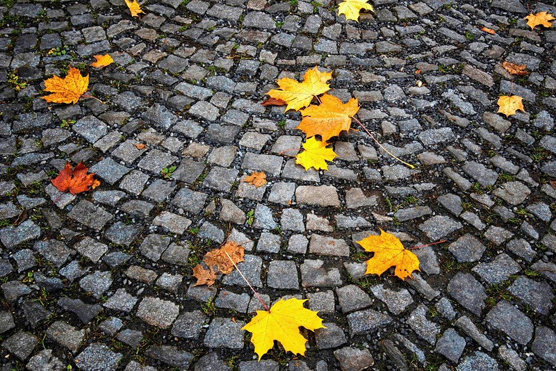 13-09Fall-Prague-135-Edit-2.jpg