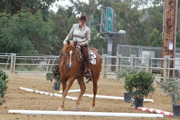 Arabian Western Tail Pre show