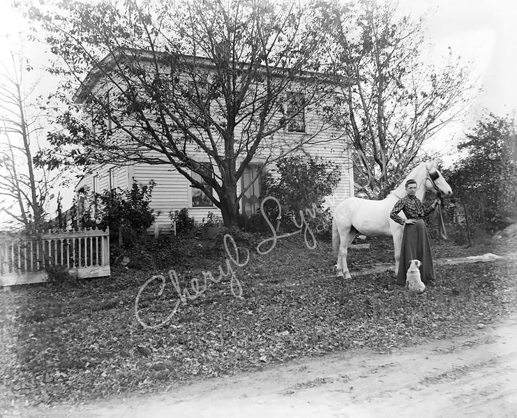 Woman-White Horse-White Dog-WM.jpg