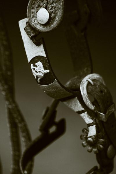 ACTHA:Golden Pines 1/16/2011