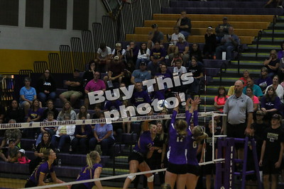 Albany Volleyball