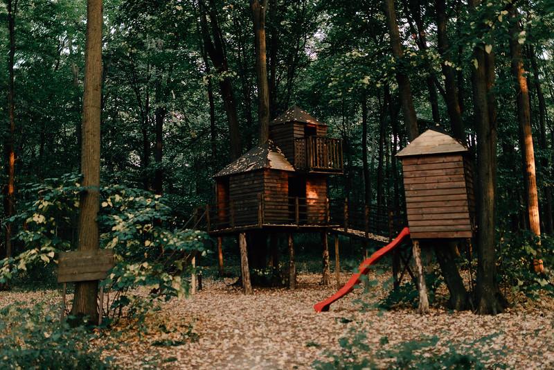 Nunta TreeHouse-93.jpg