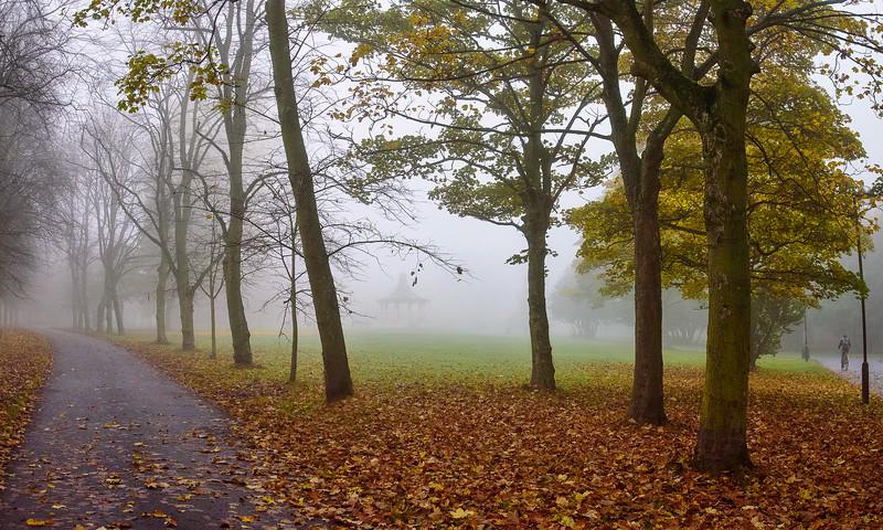 Foggy Leazes Park.jpg