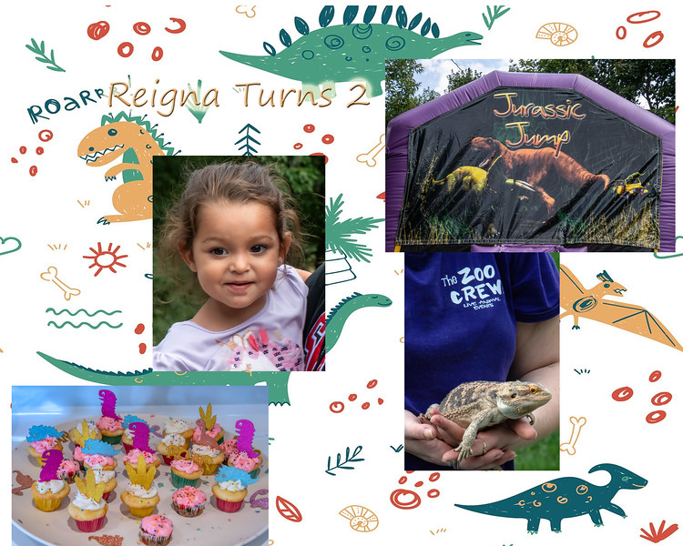Reigna's 2nd Birthday Party
