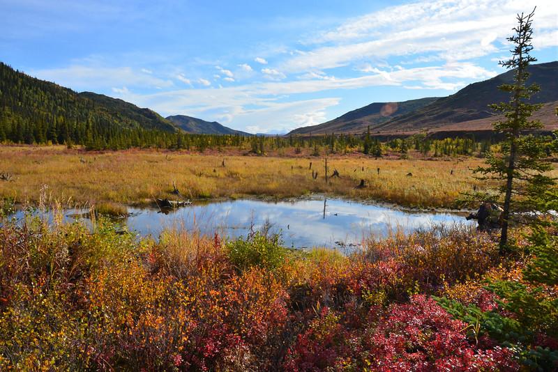 Alaska Fall 2013 - 184.jpg