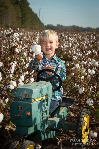family-photos-in-cotton-field (37).jpg