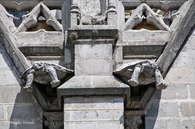 Quito, Ecuador Tortoise Gargoyles on the Basilica del Voto Nacional