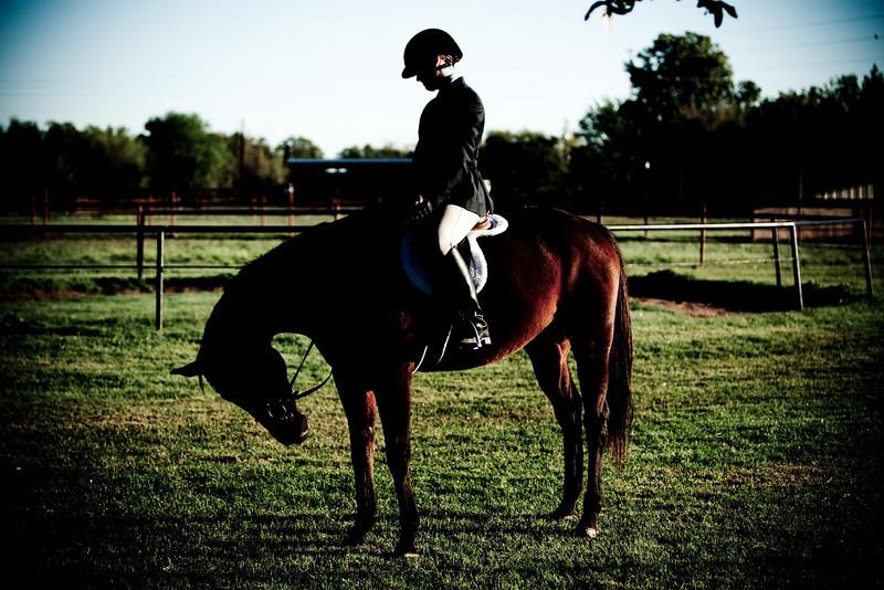 RioVista_Horse_2009-10-25-7229.jpg